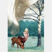jean lecointre - centaurette