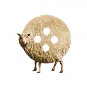 jean lecointre - mouton bouton